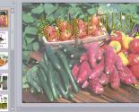 幼儿园生活PPT课件:蔬菜哪里可以吃